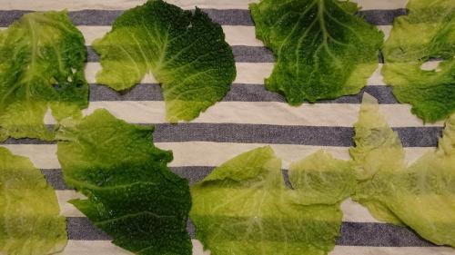 foglie scottate ed asciugate