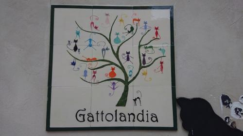 Gattolandia in Cividale del Friuli
